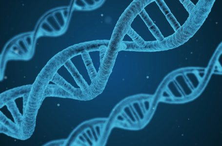 RESUMEN del informe con la bibliografía científica disponible sobre la no toxicidad y posible eficacia del dióxido de cloro