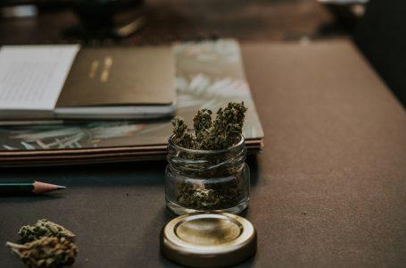 ¿Pensando en comprar marihuana a domicilio en Madrid?
