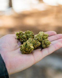 marihuana madrid tienda online