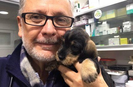 """JOSÉ FIGUEROA (veterinario): """"El dióxido de cloro lo he usado en caballos, perros, gatos y con vacas, cerdos y ovejas"""""""